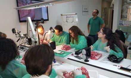 Curso de cirugía e implantología oral avanzada del Colegio de Odontólogos de Murcia
