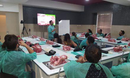 Curso teórico-práctico en el Colegio de Dentistas de Sevilla