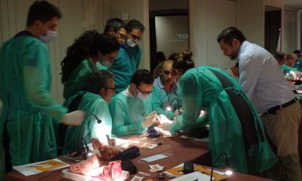 Comienza la IV Edición del Curso modular de especialización en cirugía plástica gingival