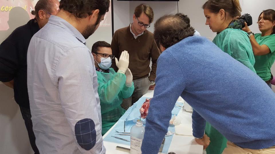 Curso intensivo sobre regeneración ósea y tisular en implantología de Guillena