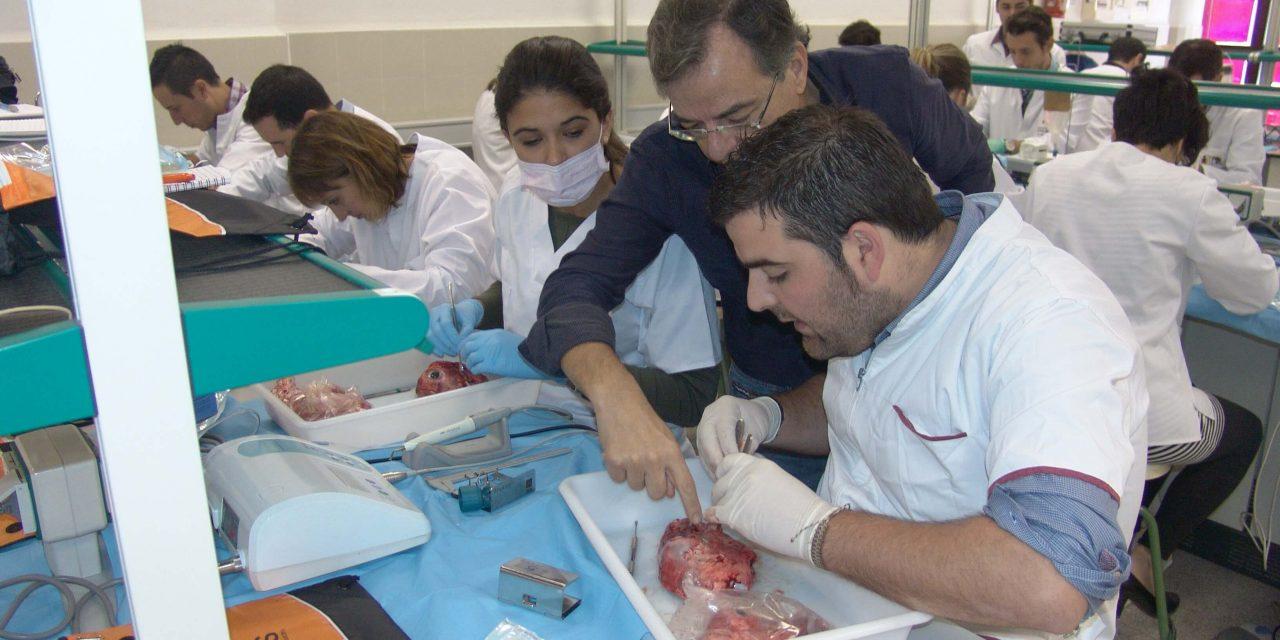 Taller Máster en Implantología – UMH