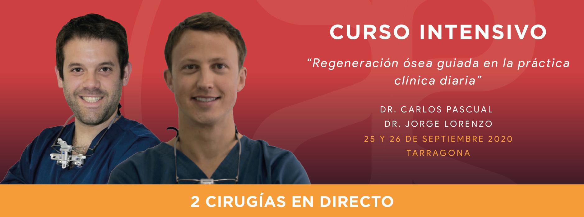 Curso intensivo Dres. Carlos Pascual y Jorge Lorenzo